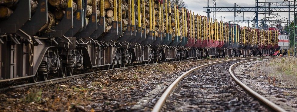 Specialvirke - Lossning av timmer i Vislanda. © Sven Persson / swelo.se